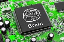 brain-side-computer