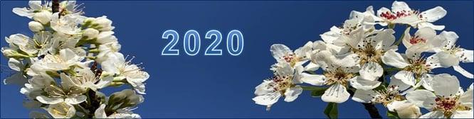 Kopfbild_Blog-36_2021-05-26
