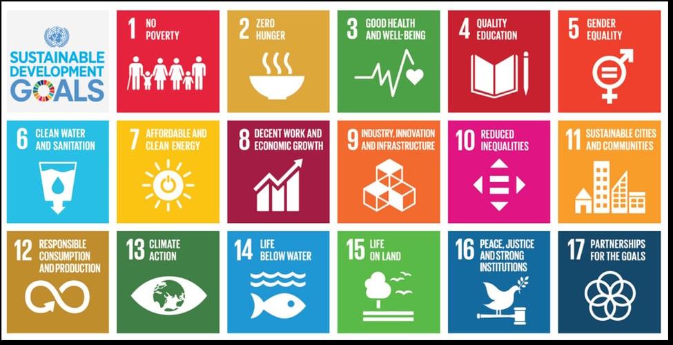 Interview mit Sandra Fernholz, Head of Social Impact & Sustainability