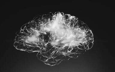 Neuroideenmanagement 2 – das Gehirn als Sozialorgan