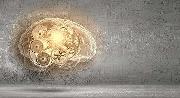 Neuroideenmanagement 3 – das Gehirn als Lustsucher