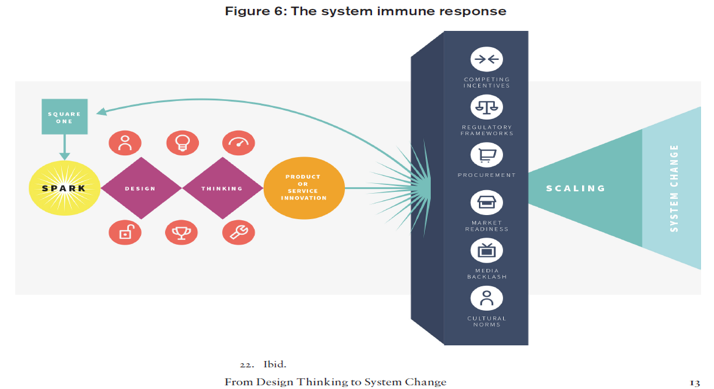 The system immune response