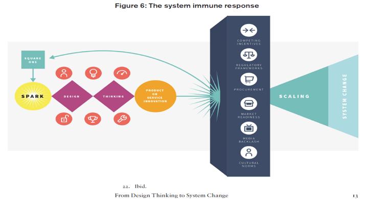 The system immune response